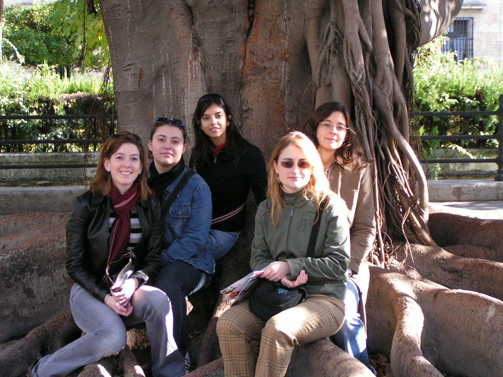 Bajo el árbol de la amistad